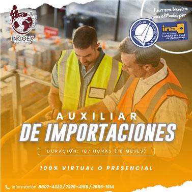 auxiliar-de-importaciones-incoex